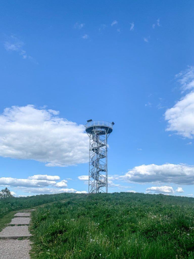 Siberijos apžvalgos bokštas